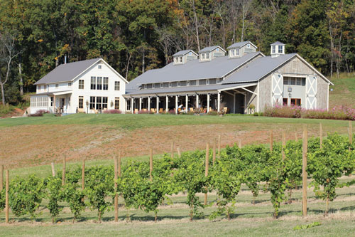 Pippin Hill Farm and Vineyards
